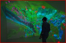 Observation and explorative analysis of the 3D dataset in the Visualization Lab at KAUST