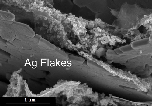 Silver microflakes suitable for flexible electrodes are grown using a simple chemical method.