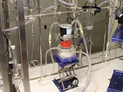 A photocatalysis setup in the KAUST Catalysis Center. Standardizing the academic language around measuring and reporting on energy conversion efficiency in different solar energy fields will support innovation.