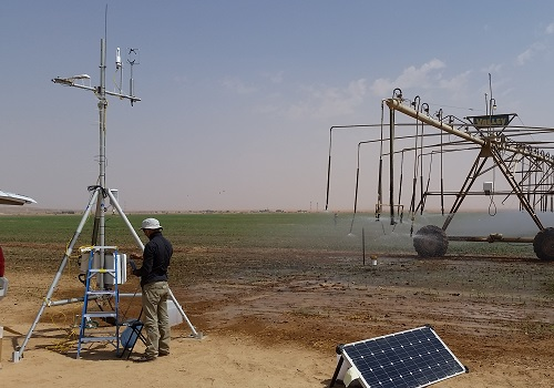 KAUST researchers work to find ways of monitoring irrigation to help farmers produce good quality high crop yields.