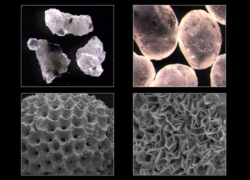 The remarkable range of sizes and shapes found in soil particles has been captured in the new classification system.