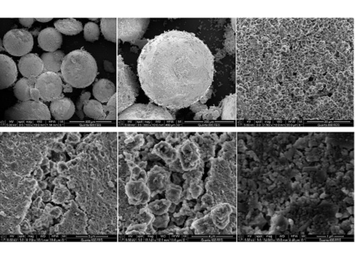 SEM images of the porous surface at increasing microscopy strength (from top left).
