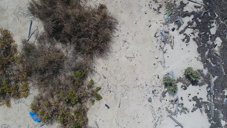 Drones can scan beaches for plastic litter 40 times faster than the standard visual-census approach.