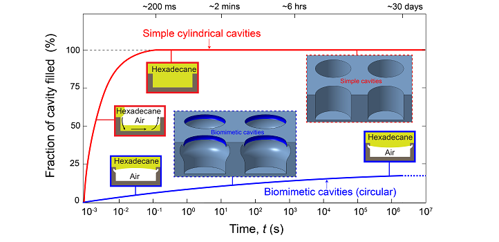 Biomimetic cavities immersed in hexadecane retained air 100 million times longer than simple cylindrical cavities.