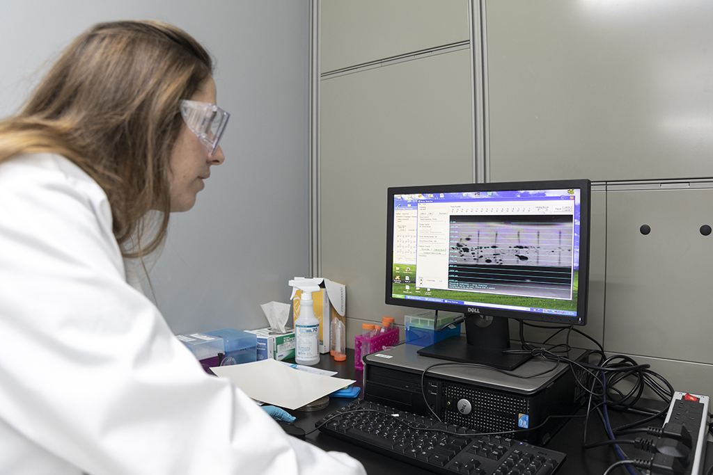 Eloise Bihar analyzes the data collected from the printed biosensors.
