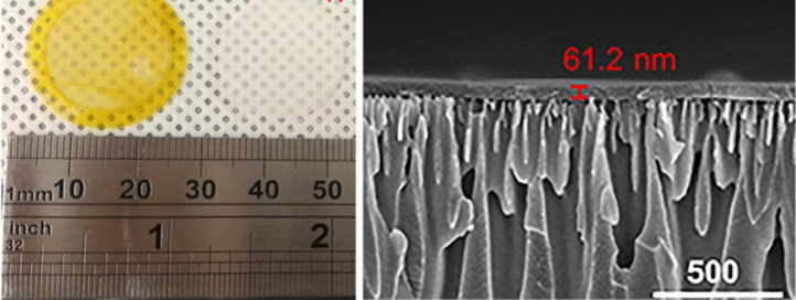 The researchers synthesized high-flux, high-selectivity solvent nanofiltration membranes (yellow, left) from a covalent, organic, porous material (right).