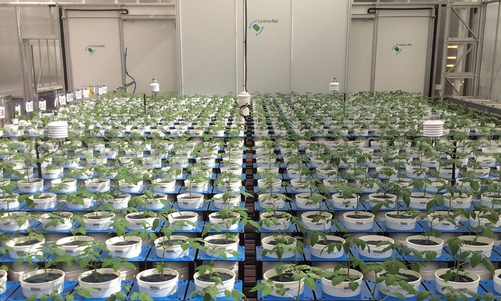 brand new bd55d 49a15 A Smarthouse at The Plant Accelerator (a high-throughput phenotyping system  built under Prof
