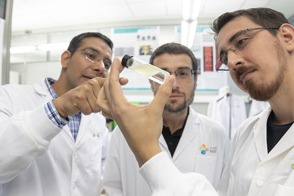 Himanshu Mishra (left), Adriano Sanchez (center) and Adair Gallo examine an oil-water system.