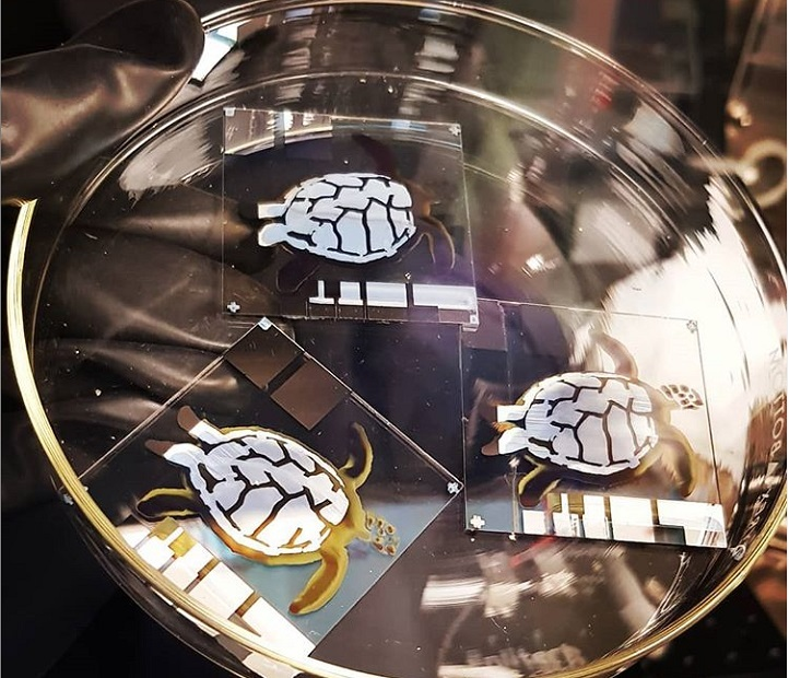 This bale of turtles is in fact a collection of inkjet-printed solar cells that show a conversion efficiency of 4.76 percent.