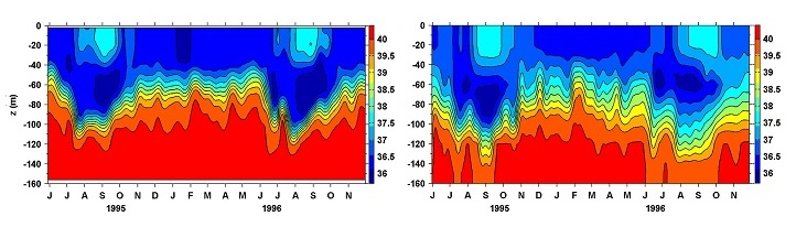 Diagrams showing the time versus water depth of changes in salinity (measured in practical salinity units or psu) over time versus water depth from June 1995 to November 1996. The diagram on the left is the model simulation: the diagram on the right is the in situ observation.