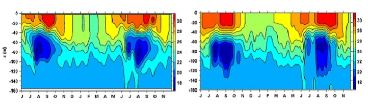 Diagrams showing the time versus water depth of changes in temperature (measured in degrees Celsius) from June 1995 to November 1996. The diagram on the left is the model simulation: the diagram on the right is the in situ observation.