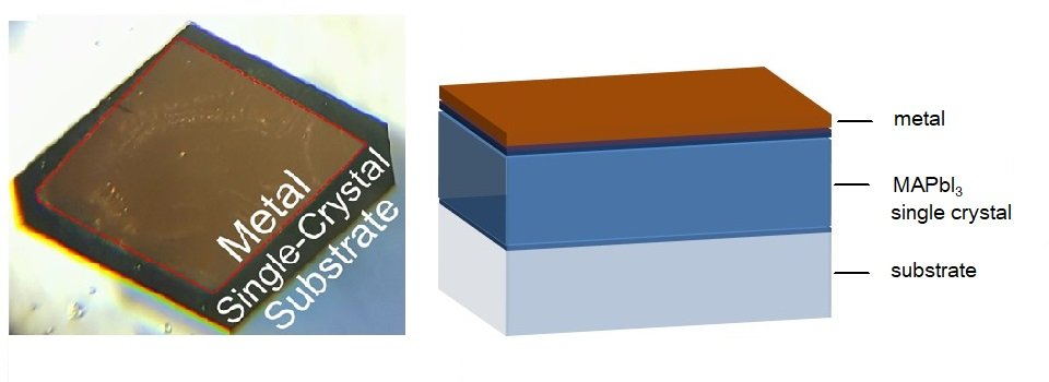 A photo and schematic of the single-crystal perovskite solar cell developed by KAUST.