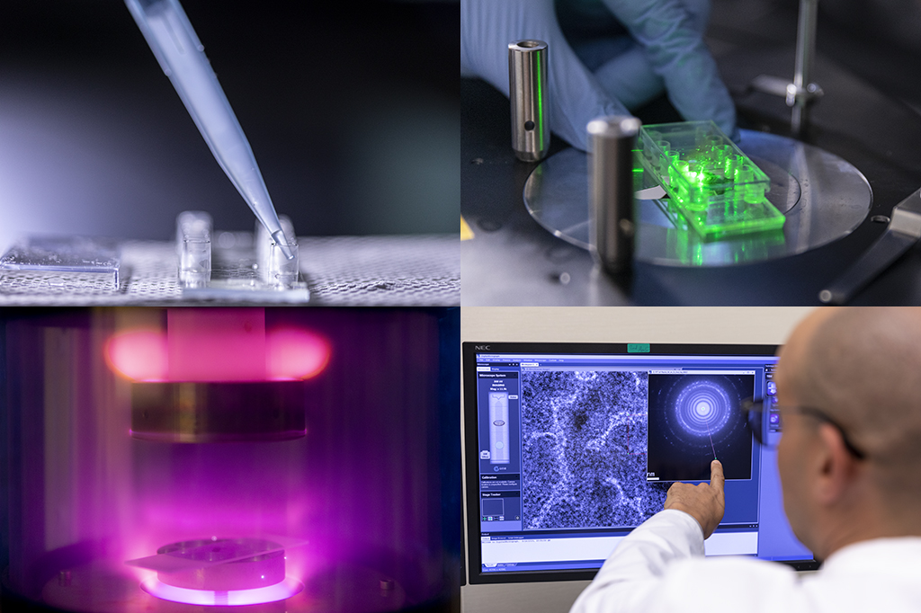 These images capture stages of the sample preparations performed for single-molecule fluorescence and cryo-TEM microscopy. Rachid Sougrat of the Imaging and Characterization Core Lab helps to analyze the results (bottom right).