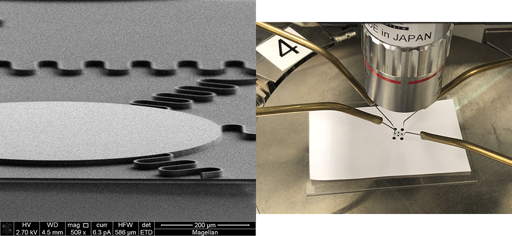 SEM image of the microscope, honeycomb-serpentine, reconfigurable platform with a thickness of 15 micrometers prior to the release step (left). The reconfiguration test for the same platform after the release step using a probe station (right).