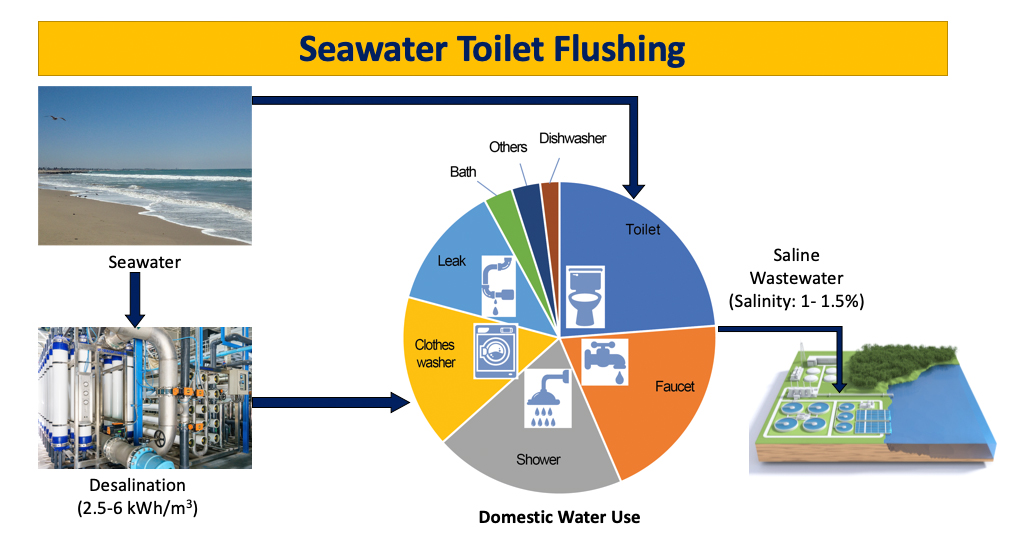 A considerable amount of freshwater could be conserved if coastal cities implemented seawater for toilet flushing.