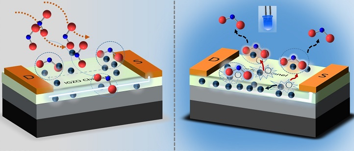 NO2 molecules (red and blue spheres) in the air are drawn to the electrons (black spheres) on the sensor's surface, triggering a detection event (left). The sensor is revived with light (right), which generates charged particles that neutralize and release the adsorbed NO2.