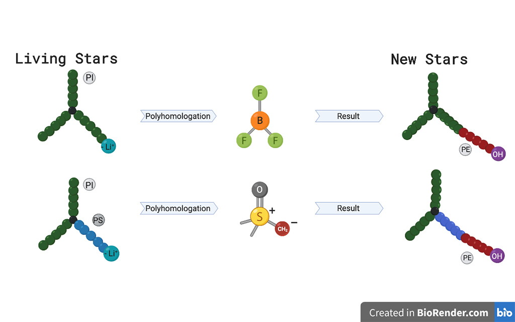 The team are creating various miktoarm star polymers using a boron reagent to bond additional polymer arms together.