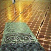 Branching out into solar cells